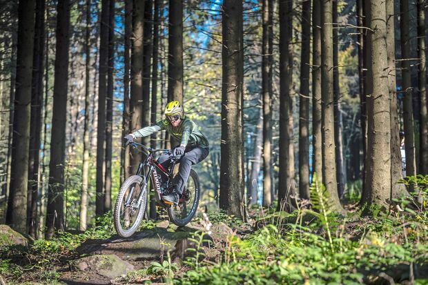 Enduro Best Of 2020