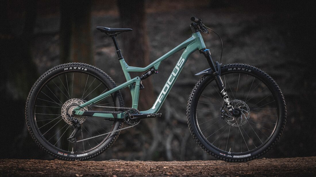 Focus Bikes; Thron