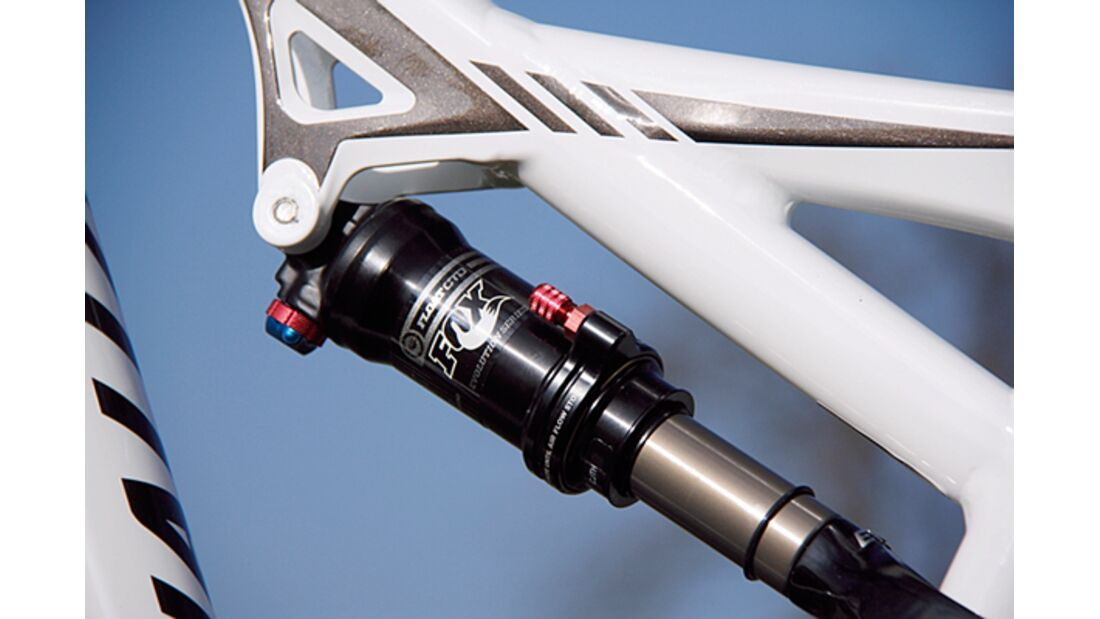 MB 0414 Specialized Camber Comp Evo 29 - Detail
