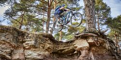 MB 0419 Canyon Strive CFR 9.0 Team Produktbild