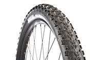 MB-0615-Maxxis-Ardent-TR-Exo-2,25-DI (jpg)