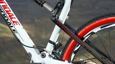 MB Cannondale Rize Carbon 1 - Detail
