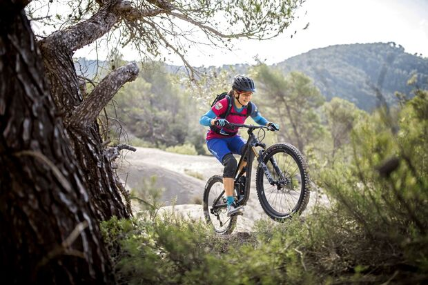 MB Canyon 2019 Spectral WMS