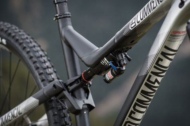 MB-Commencal-Meta-AM-Race-Brushed6 (jpg)
