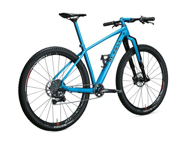 MB De Rosa BIG Mountainbike RS-1