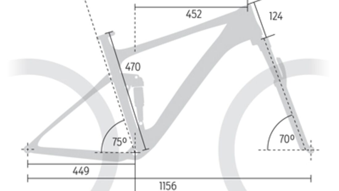 MB Specialized Camber Carbon Expert 29 - Geometrie