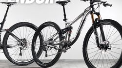 MB Trek Remedy 9 29