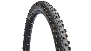 MB1114_Schwalbe_Dirty_Dan_DI (jpg)
