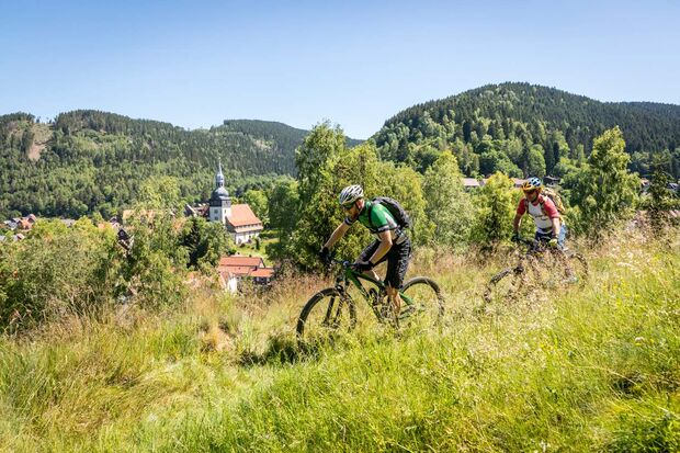 MOUNTAINBIKE-Touren im Harz