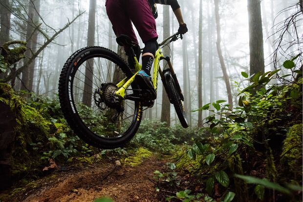 Norco-Sight-lifestyle2 (jpg)