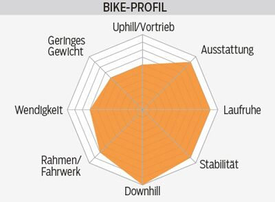 mb-0416-votec-vx-pro-profil-mountainbike (jpg)