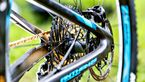 mb-1017-bike-highlights-giant-anthem-advanced-pro-29-detail-2 (jpg)