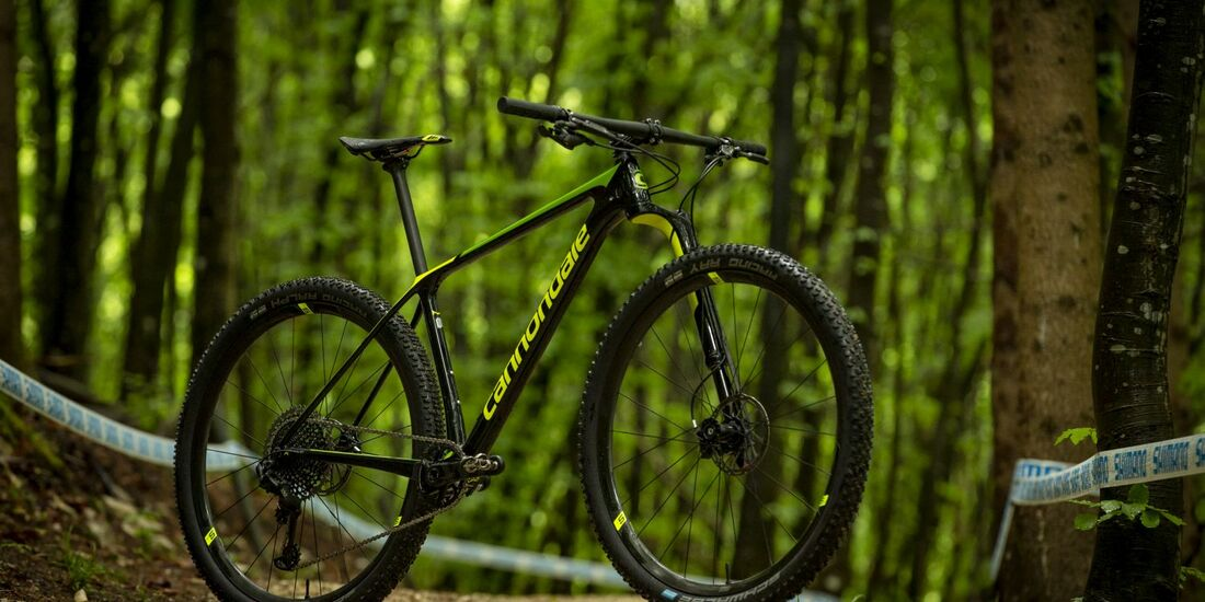 mb-cannondale-f-si-lefty-ocho-2019-13.jpg