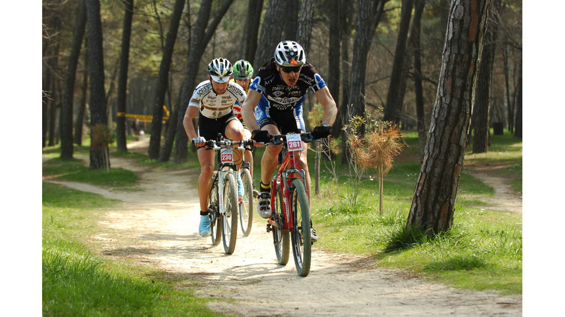 od-2017-italien-advertorial-emilia-romagna-cervia-bycicle-show-pineta.jpg (png)